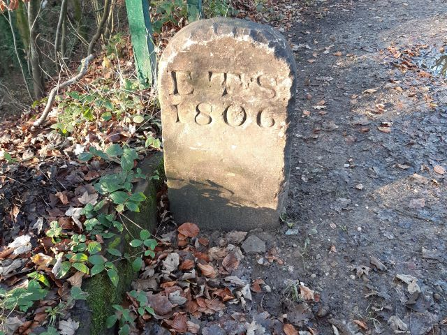 Boundary Stone in Elnup Wood near Mill Dam Cottages